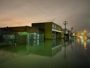 Flood destroys 100 artworks by Sydney photographer