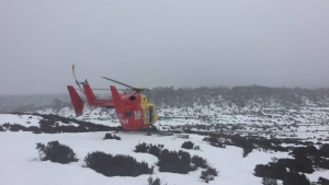 Missing bushwalker found alive in Tas wilderness
