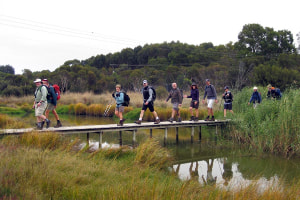 Walk of the week: Callington Spur Trail, SA