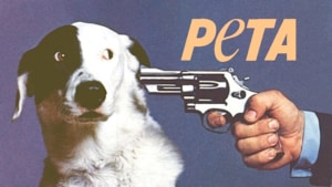 PETA Gets Some of It's Own Medicine.
