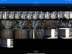 Adobe adds RAW capture to Lightroom mobile and greater export options