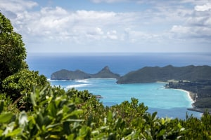 Lord Howe Island Photography Weeks - 1-15 May and 9-13 Nov 2020