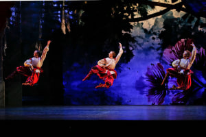 The Australian Ballet: The Nutcracker