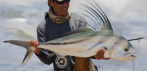 VIDEO: Fly fishing for roosterfish