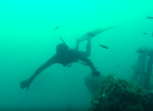 VIDEO: EXHALE Free Diving visual treat