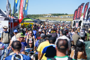 Sea Otter suspends regos but delays call on cancellation