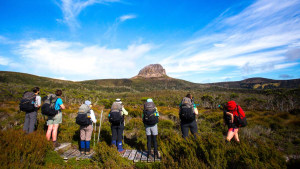 Tassie lifts most travel restrictions