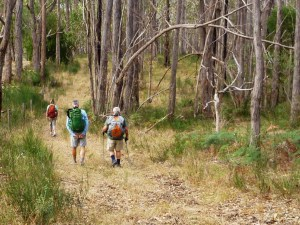 100km Adelaide walking trail set for 2021