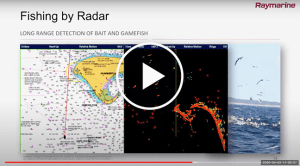 Raymarine webinar: fishing tech for modern anglers