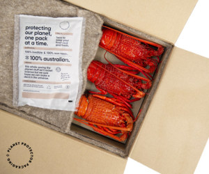 ANZ food, beverage packs win WorldStar awards